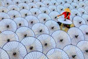 PhotoVivo Gold Medal - Hlaing Myint Min (Myanmar)  Painting Umbrellas