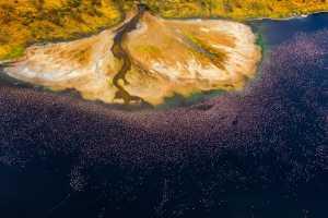 PhotoVivo Gold Medal - Yong Lin (China)  Pink Coastline 1
