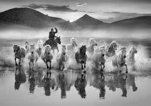 Circuit Merit Award e-certificate - Yuk Fung Garius Hung (Hong Kong)  Running Horses 10