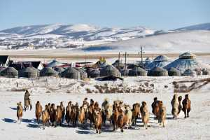 ICPE Gold Medal - Andreas Kosasih (Indonesia)  Somewhere In The Middle Of Inner Mongolia 01