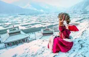 PhotoVivo Honor Mention e-certificate - Jinyi Zhang (China)  Familiarity 43