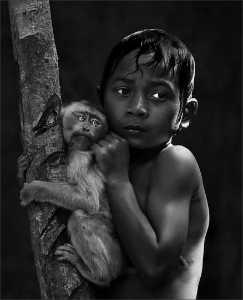 FIP Ribbon - Michael Tran (USA)  Jungle Life-M