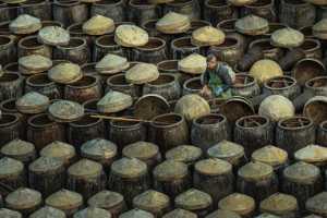 PhotoVivo Gold Medal - Wei Gong (China)  Making