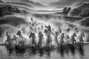 APU Gold Medal - Yuk Fung Garius Hung (Hong Kong)  Running Horses 1