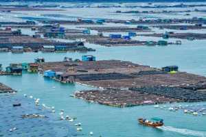 Circuit Merit Award e-certificate - Jie Fischer (USA)  Fishing Homes On Sea 5