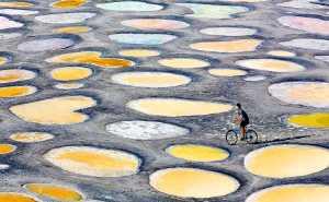 PhotoVivo Gold Medal - Sui Li (China)  Go Across The Spot Lake