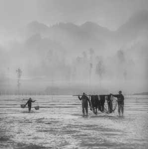 PhotoVivo Gold Medal - Rongmao Yang (China)  Return 2