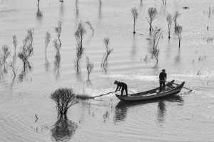 PhotoVivo Gold Medal - Rongmao Yang (China)  Fishing Skills 1