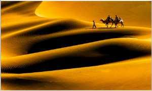 APAS Honor Mention e-certificate - Rongmao Yang (China)  Desert Journey