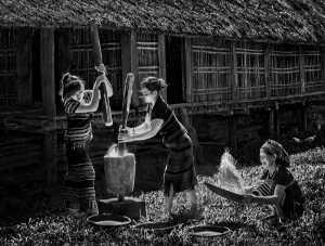 PhotoVivo Gold Medal - Dao Tien Dat (Vietnam)  Milling Rice On Highland