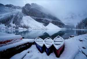 PhotoVivo Gold Medal - Michael Tran (USA)  Winter Break