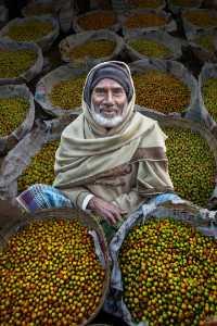 PhotoVivo Honor Mention e-certificate - Juanjuan Shen (China)  The Old Man Selling Fruit