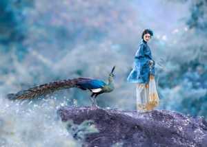 APU Winter Merit Award E-Certificate - Jiangchuan Tong (China)  The Peacock And The Beauty