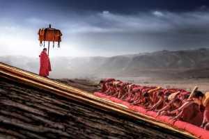 GTPC Merit e-certificate - Ying Han (China)  Sun Buddha