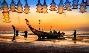 FIP Ribbon - Tong Hu (China)  Morning Light