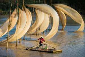 PhotoVivo Gold Medal - Zhenghua Peng (China)  Flying Canvas