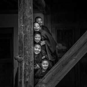 SIPC Merit Award - Dezhen Huang (China)  Small Monks