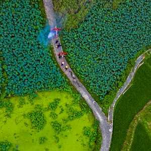 PhotoVivo Honor Mention e-certificate - Senliang Li (China)  The Day Of Water Sacrifice 22