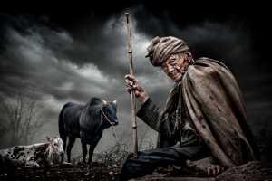 ICPE Gold Medal - Arnaldo Paulo Che (Hong Kong)  The Sheepherder 2