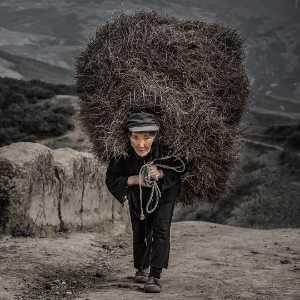 PhotoVivo Gold Medal - Peiwen Sun (China)  Burden