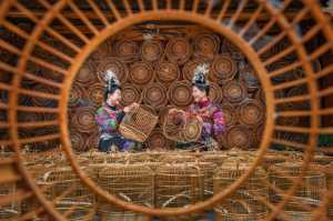 PhotoVivo Honor Mention e-certificate - Wenjie Luo (China)  The Friendship In Cage