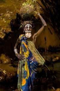 PhotoVivo Gold Medal - Weijing Yang (China)  Wild African 1