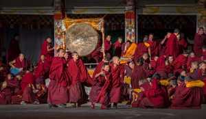 PhotoVivo Gold Medal - Jiuru Liang (China)  Exciting Moment