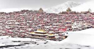 APU Gold Medal - Li Gao (China)  Village In Winter