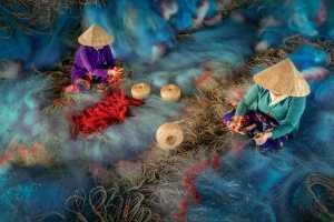 PhotoVivo Honor Mention e-certificate - Chin Leong Teo (Singapore)  Blue Nets 2
