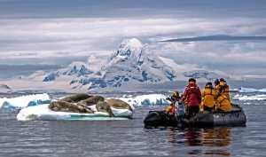 PSA HM Ribbons - Xiao Gu (USA)  Cruise Through Glaciers