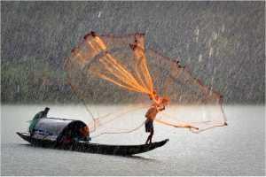 PhotoVivo Honor Mention e-certificate - Ducte Le (USA)  A4-Casting Net In The Rain