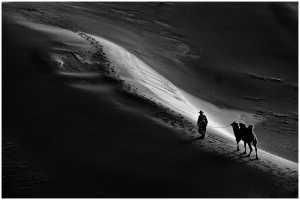 PhotoVivo Gold Medal - Thomas Lang (USA)  Long Way Desert