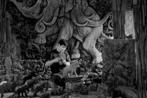 PhotoVivo Gold Medal - Waranun Chutchawantipakorn (Thailand)  Phet Viriya