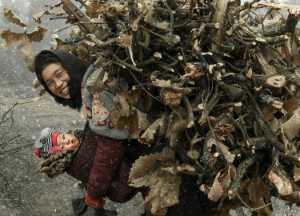 PhotoVivo Gold Medal - Jun Luo (China)  Mother