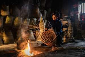 APAS Gold Medal - Ling Gan (China)  Weave