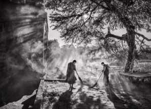 PhotoVivo Gold Medal - Yan Wong (China)  Sweeping