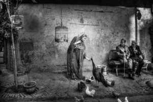 PhotoVivo Gold Medal - Shiyong Yu (China)  Woman And Peacock