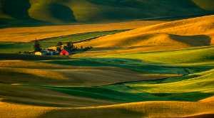 PhotoVivo Gold Medal - Michael Tran (USA)  Red Barn