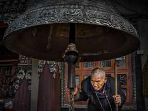 PhotoVivo Gold Medal - Liquan Sheng (China)  Believer