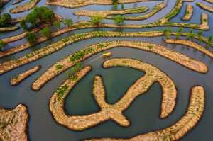 Circuit Merit Award e-certificate - Ping Lu (China)  Water Maze2