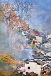APAS Gold Medal - Yan Wong (China)  Autumn Morning