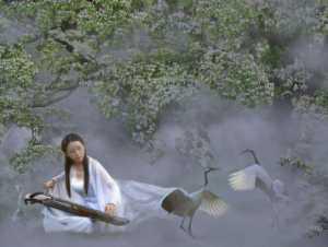 APAS Honor Mention e-certificate - Xiaoping Mao (China)  Sound Of Qin