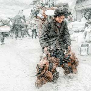 Circuit Merit Award e-certificate - Jianglin Chen (China)  Market In The Snow