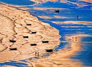 APAS Gold Medal - Tong Hu (China)  Golden Bay