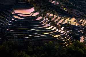 SIPC Merit Award - Juan Zhang (China)  Terraced Fields