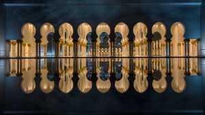 PhotoVivo Gold Medal - Vivek Kalla (India)  Serenity