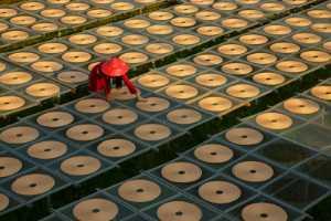 PSA HM Ribbons - Kin Keong Fu (Macau)  Follow The Circle