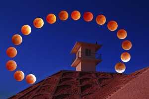 APU Gold Medal - Quanzhong Zhang (China)  Red Moon