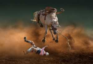 PhotoVivo Gold Medal - Yanping Qiu (China)  Horse Pawns