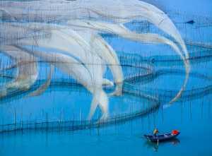 Circuit Merit Award e-certificate - Ganghong Wu (China)  Float